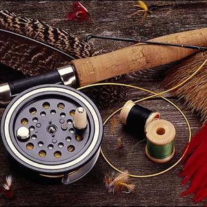 Охотничьи и рыболовные магазины Купавны
